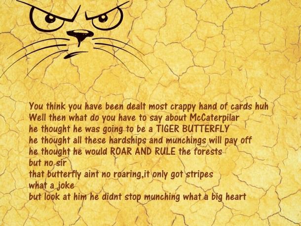 Tiger Butterfly what a joke